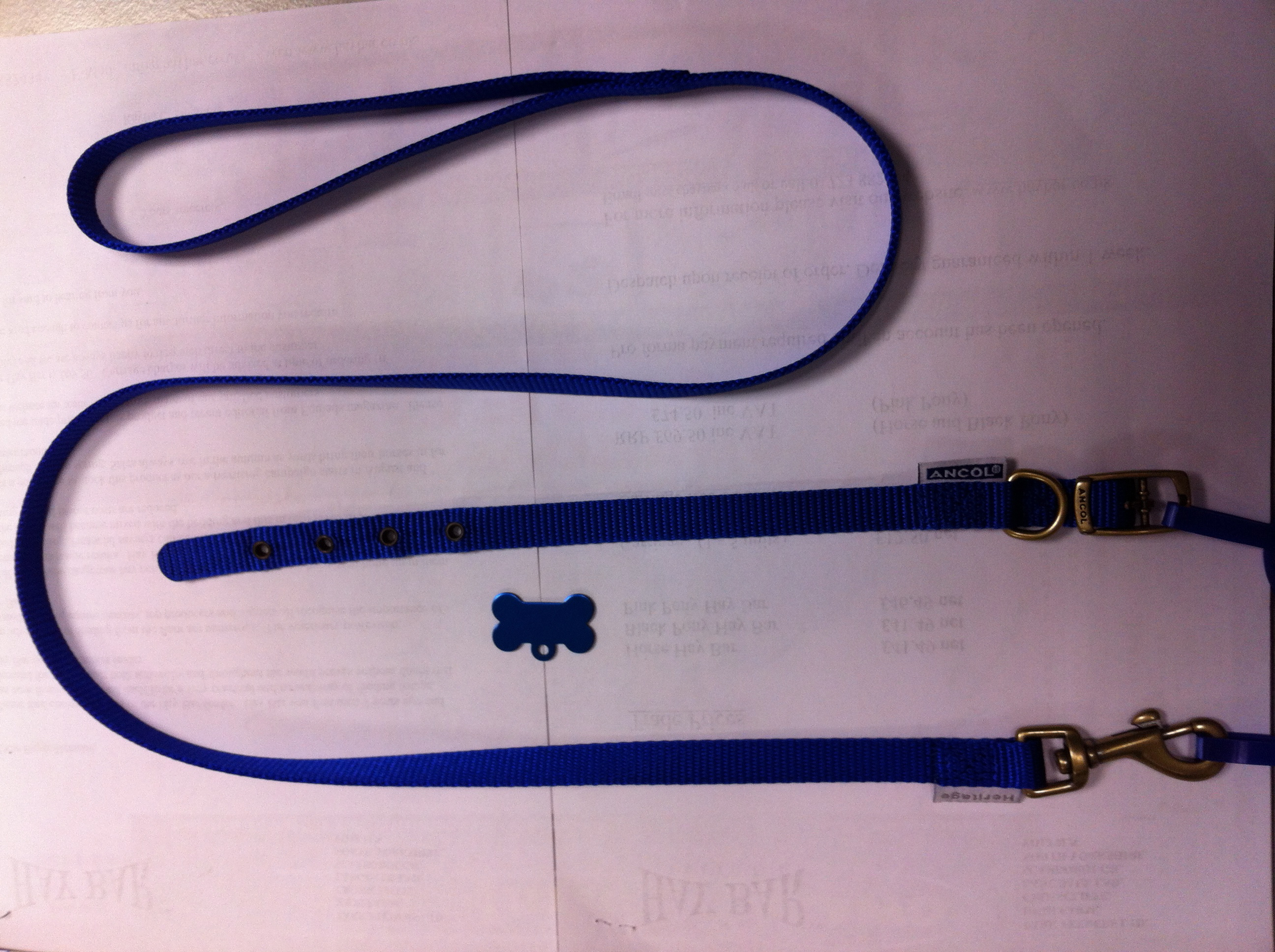 Ancol Collar & Lead Special with FREE Engraved Pet ID Tag