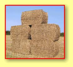 Straw Equine Bale (LOCAL DELIVERY/PICK UP ONLY)